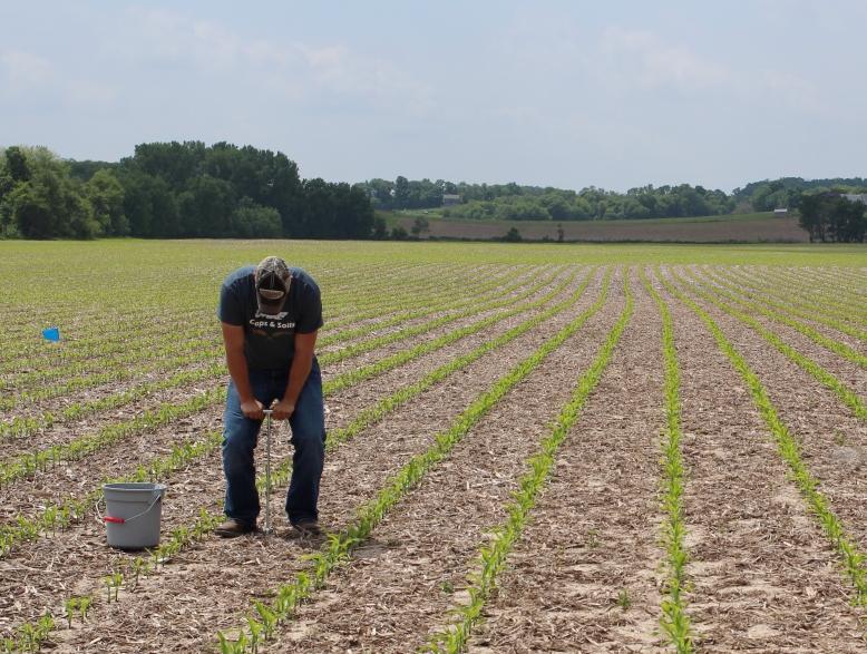 UW Discovery Farms Soil Sampling